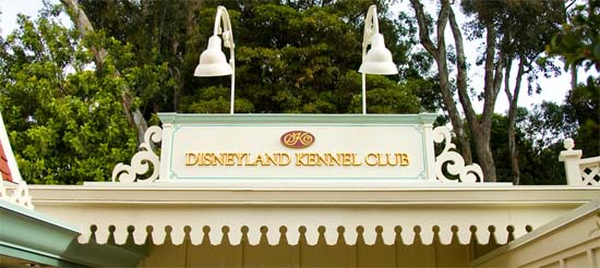 Review – Disneyland Kennel Club