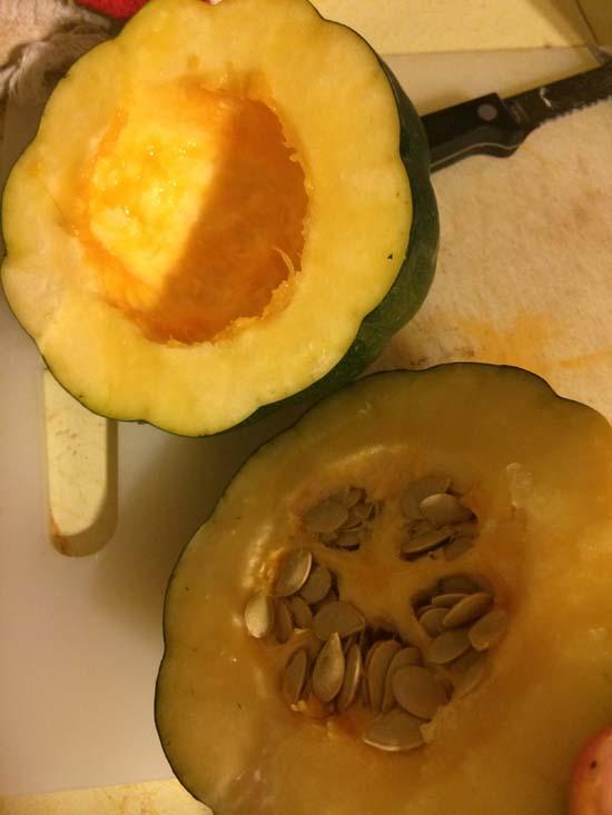 acorn squash oct 2014 B