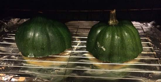 acorn squash oct 2014 D