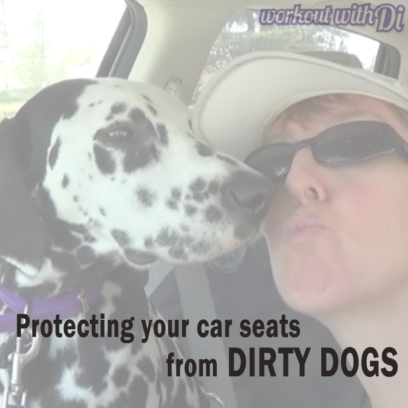 Protecting your car seats from dirty dogs