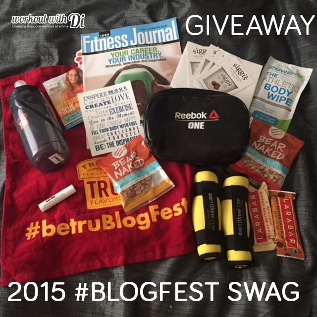 Blogfest Swag Giveaway