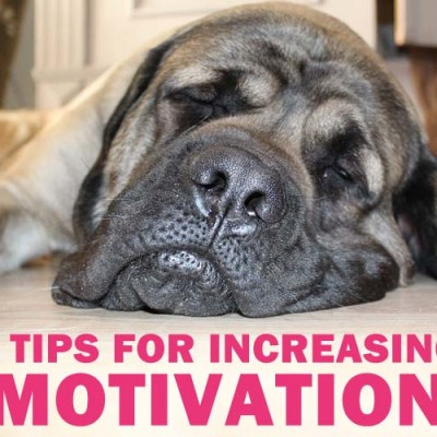 5 tips for increasing motivation