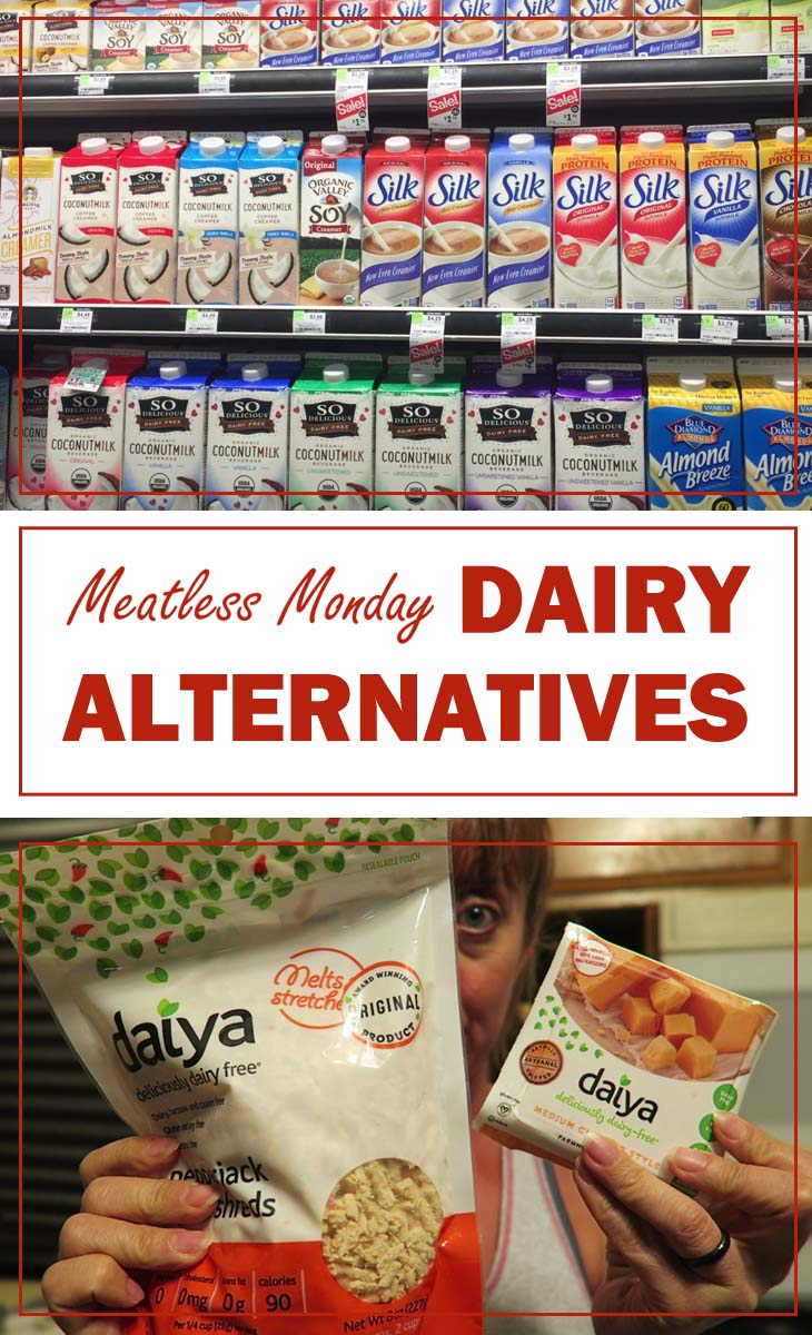 meatless monday dairy alternatives pin