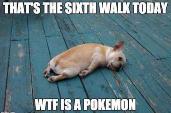 3-walking-the-dog-to-play-pokemon-Go-funny-meme