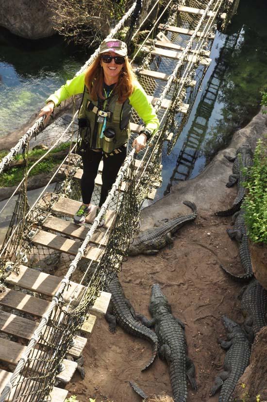 woman walking on a bridge over alligator pit on the  wild africa trek in animal kingdom