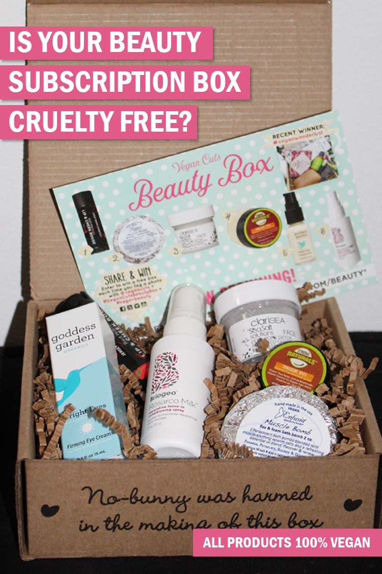 VEGAN CUTS JAN 2017 SUBSCRIPTION BOX