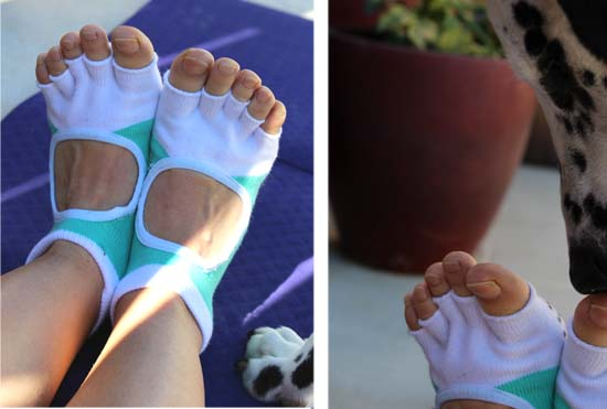 zenpaws yoga socks