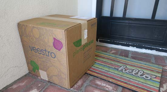 veestro vegan meal delivery service
