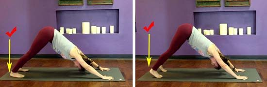 downward facing dog tips