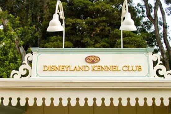 disneyland kennel club FEAT