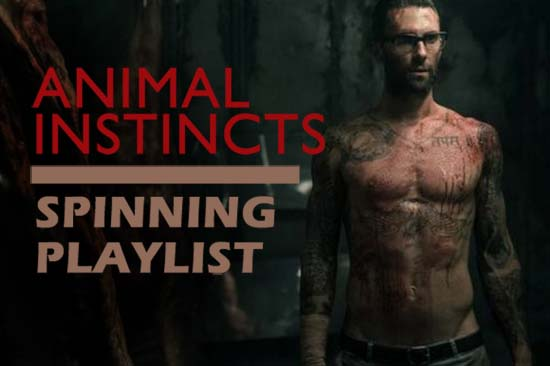 """Spinning playlist inspired by """"Animals"""" by Maroon 5"""