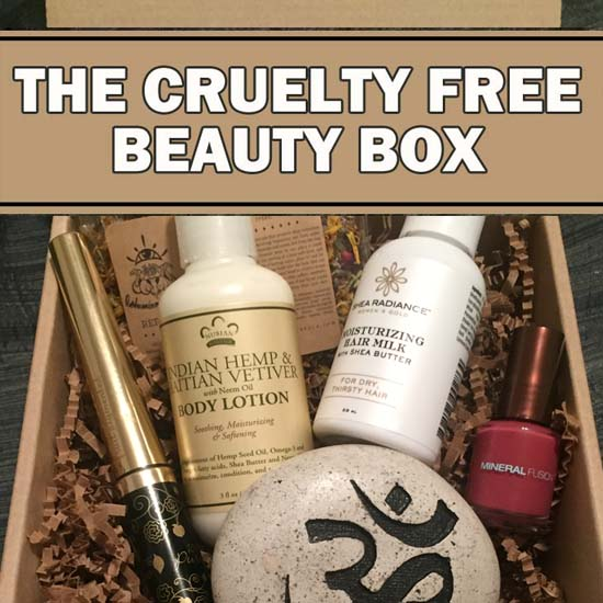 VEGAN CUTS NOVEMBER BEAUTY BOX 2015
