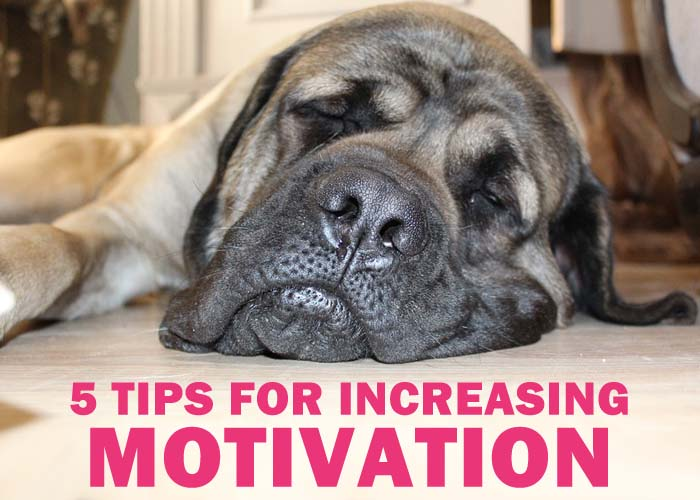 5 motivation tips