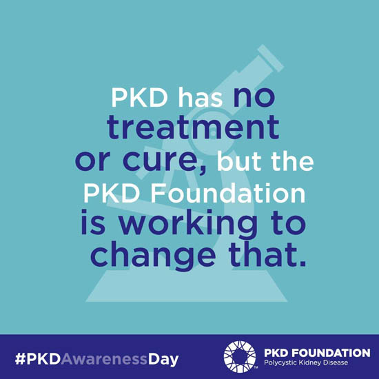 PKD has no treatment of cure, but the PKD foundation is working to change that.