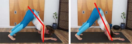 shoulder alignment in dolphin pose