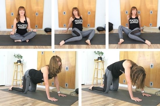 Warm up poses for grounding practice, Sukhasana, seated windshield wipers, cat cow